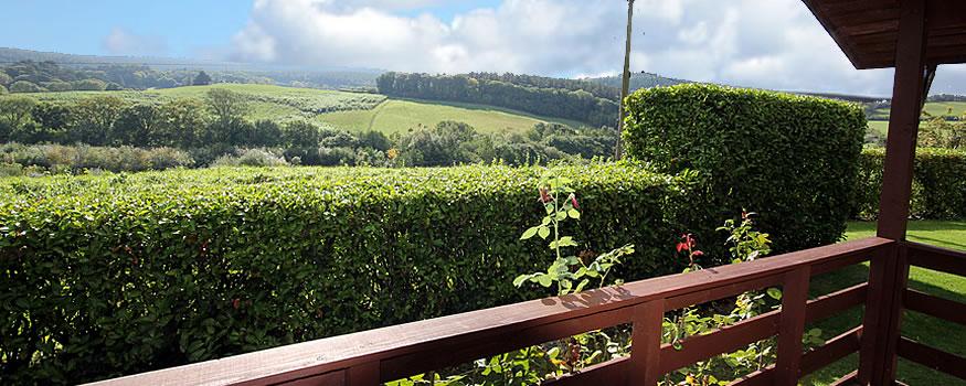 Pine Tree Lodge - View from Veranda